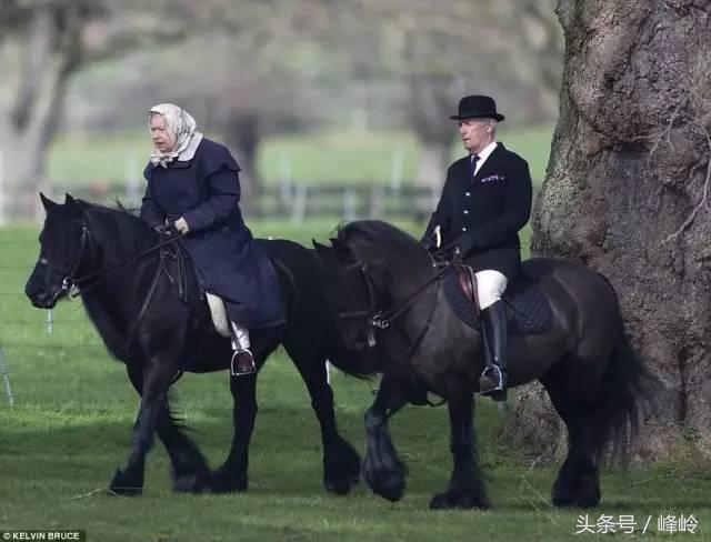 葬礼流程_英国王室公布女王葬礼流程,全英国都不干了 - 生活新闻 ...