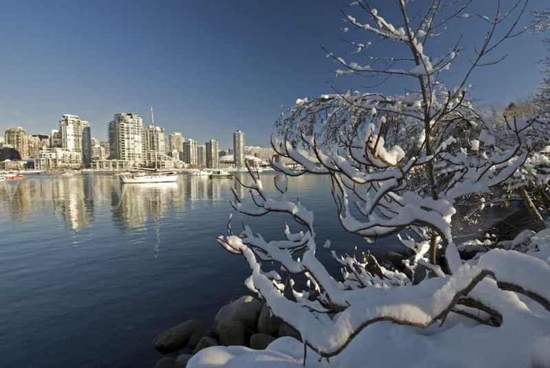 200110120627_snow-vancouver-tommorrow.jpg